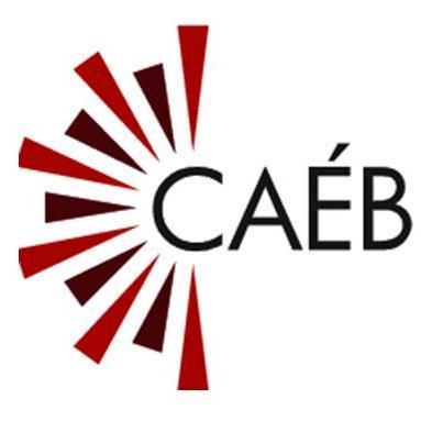 Logo Centre d'accès équitable aux bibliothèques.